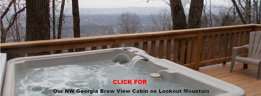North Georgia Brow View Cabin for rent