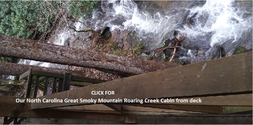 North Carolina Roaring Creek Cabin for rent in Bryson City Smoky Mountains